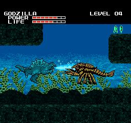 reef2